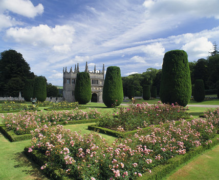 Looking across the Formal Garden (east side) at Lanhydrock, past the clipped Irish yews and beds of roses to the Gate House