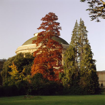 A view of the Rotunda surrounded by autumn coloured trees taken from the north east of the house at Ickworth