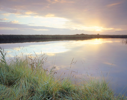 A view of the freshwater marshes near Blakeney Point