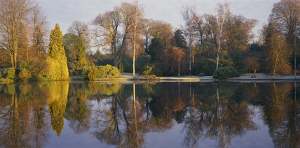 A midwinter morning view of the Top Lake at Sheffield Park Garden with a frost on the ground and the trees are reflected in the calm water