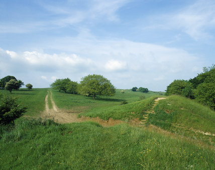 Earthworks at Cissbury Ring