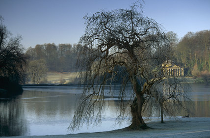 A tree silhouetted against a backdrop of the Pantheon in winter atStourhead, Wiltshire