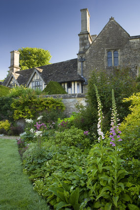 Foxgloves in a border in the garden to the south of the fifteenth-century Great Chalfield Manor, Wiltshire