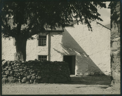 Unidentified Cottage with Tree