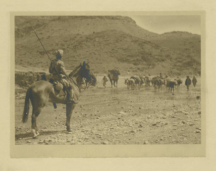 Mounted Soldier leading Donkeys and Packing Horse