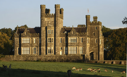 Deer grazing in front of Crom Castle built 1832-8 (not NT) on the Crom Estate, Co. Fermanagh, Northern Ireland.