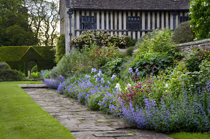A deep border with irises and hardy geraniums against a stone flagged path at the fifteenth-century Great Chalfield Manor, Wiltshire