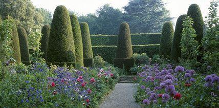 View into the Pillar Garden at Hidcote Manor in May with yew topiary and hedges in the background
