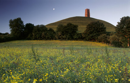 A view across a field of yellow flowers looking towards Glastonbury Tor with its fifteenth century tower, at dawn, with the moon still visible in the sky