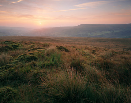 Close view of sunrise from Pule Hill, Marsden Moor, showing the mosses and grasses on the hill and the farm land and heather covered hills beyond, with the sun showing through light cloud
