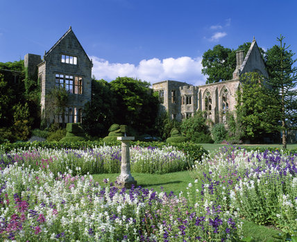 The ruin of Nymans seen over formal flower beds, with purple and white flowers surrounding the central sundial