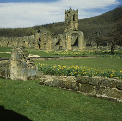 Ruins of the C14th Carthusian Priory