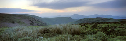 Panoramic view from shrubland at the head of Carding Mill Valley of the Long Mynd, the undulating moorland hills in the misty blue early morning light