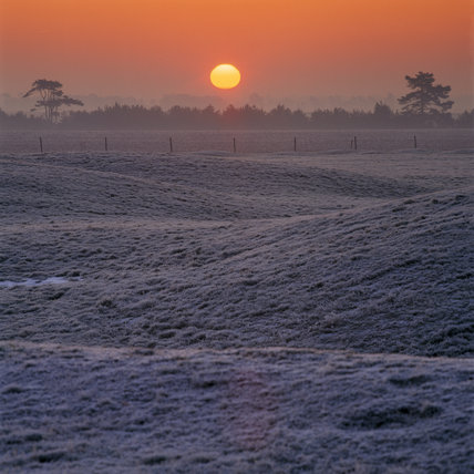 View of the sunrise over Sutton Hoo burial mounds