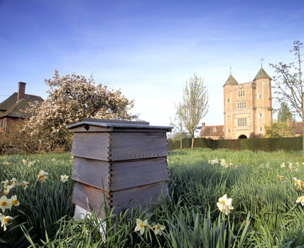 The C15th Tower at Sissinghurst seen from across the Orchard with daffodils and a beehive in the foreground