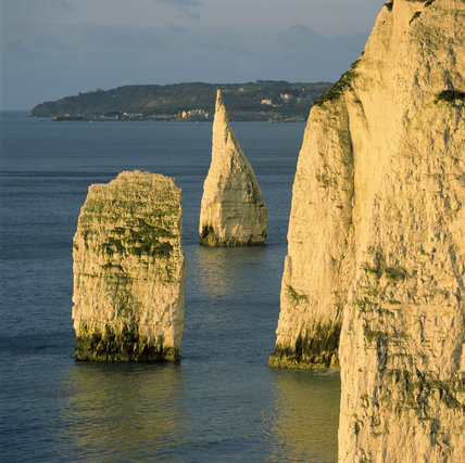 Cliffs and pinnacles around Old Harry Rocks, Dorset, in mid-afternoon sunlight