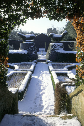 The White Garden under snow