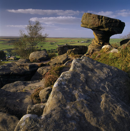 A view of the fantastically shaped rock formations and open moorland at Brimham Rock, North Yorkshire