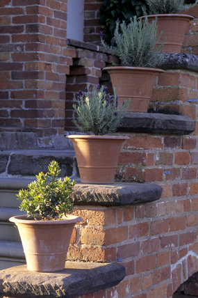 Terracotta pots by the steps around the Parterre at Hanbury Hall