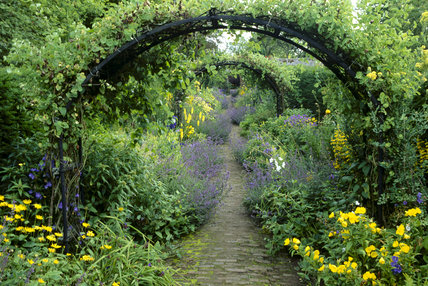 Pergola's and a variety of plants surround a pathway as it leads through the Walled Garden at Wallington