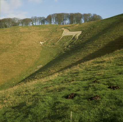 White Horse on the hill at Cherhill Down