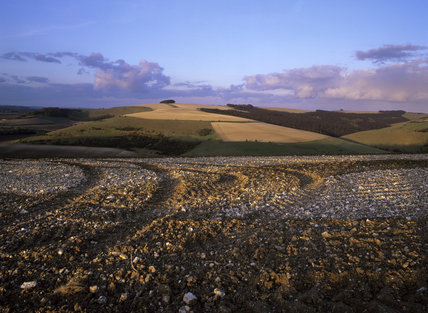 A panoramic view over Melbury and Fontmell Downs