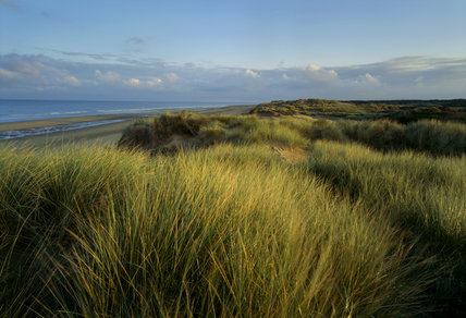 View of the dunes at Formby Point