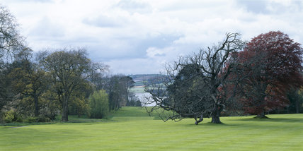 View from Antony House towards the river Chyner in spring