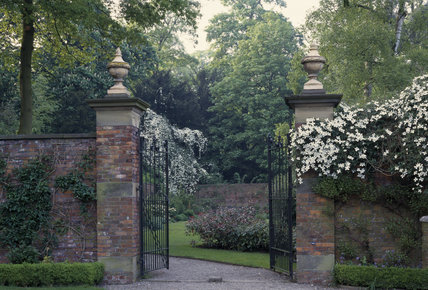 The Gateway and walls at Erddig clothed in Clematis 'Montana'