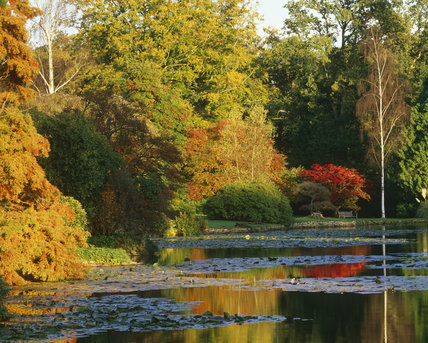 A view of one of the five lakes at Sheffild Park Garden in the autumn