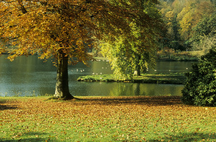 Autumn trees beside the lake at Stourhead, Wiltshire