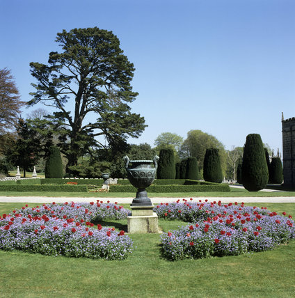 Lanhydrock, tulips, forget-me-nots and central urn in the formal garden
