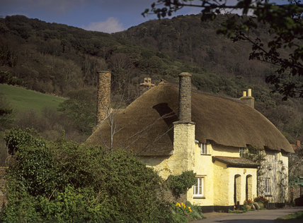 A pair of thatched and cream-washed cottage in Bossington at Holnicote