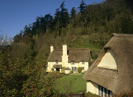 Bow Cottage at Holnicote Estate, a cream-washed thatched house on a sloping green at the foot of a steep wooded combe climbing to Selworthy Beacon