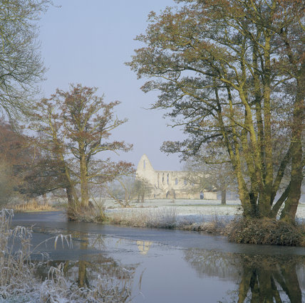 View across River Wey and frosty ground towards Newark Priory Ruins, framed by trees