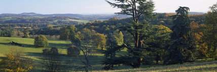 A panoramic view across the Brockhampton Estate with mixed and ornamental woodland and rolling fields