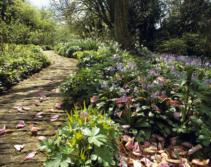 Path through the Lower Stream Garden at Hidcote Manor Garden, Gloucestershire