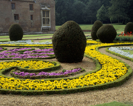 French Parterre at Oxburgh Hall - Box hedges surrounding Ageratum 'Blue Danube' and Tagetes 'Yellow Boy' with Senecio 'Silver Dust'