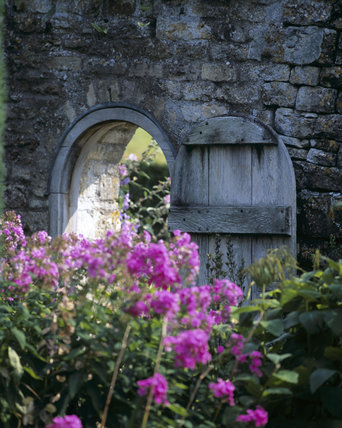 Garden gate open in wall, with pink perennial flowers in foreground (Phlox)
