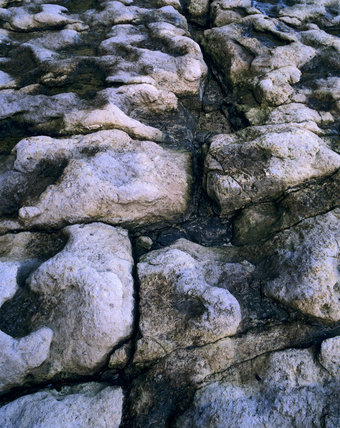 Close view of the textured limestone rock pools at Dancing Ledge, a disused stone quarry on the Spyway Farm Estate, Purbeck, Dorset
