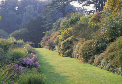 Aster border by the wall and the terrace opposite lawn walk starting to show autumn colour at Upton House in September