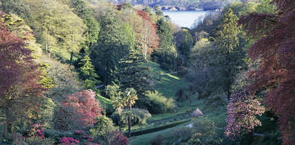 View from the top of the house, Glendurgan, down the valley towards the Helford river
