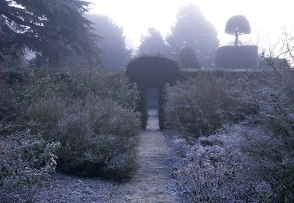 The Old Garden on a cold frosty morning