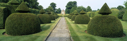 The Apostle Garden at Lytes Cary Manor