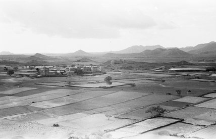 Cultivated fields around Abis