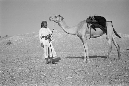 Wilfred Thesiger with his camel