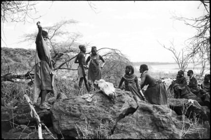 Pokot women butchering a camel