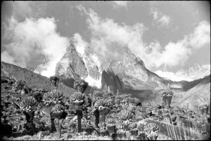 Mount Kenya from the Teleki Valley