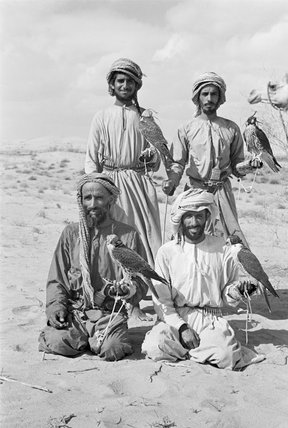 Sheikh Zayed's falconers