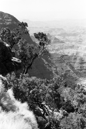Escarpment of the Simien mountains